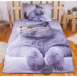 TOP 3D povlečení 140x200 70x90 Grey cat