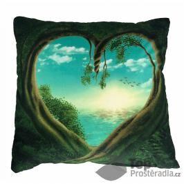 Apex 3D povlak 45x45  Srdce přírody