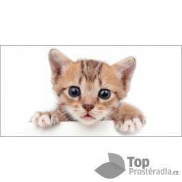 TOP Osuška 70x140 Kitten white