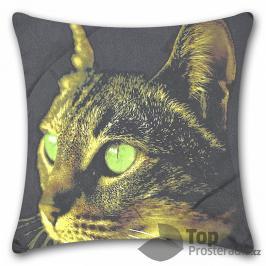 TOP Apex 3D povlak 45x45 Kočka zelenoočka