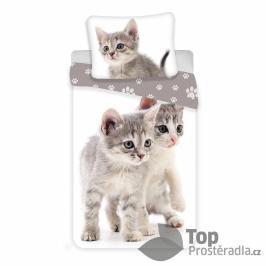 TOP Bavlněné povlečení 140x200+70x90 Kitten Grey