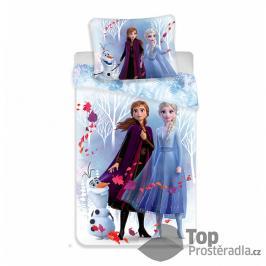 TOP Bavlněné povlečení 140x200+70x90 Frozen 2 White
