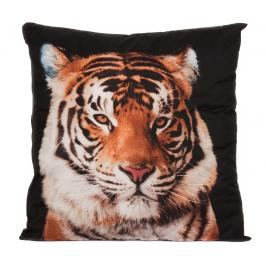 Apex 3D povlak 45x45 Black tiger