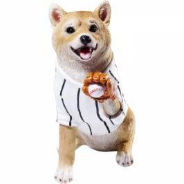 Kasička Baseball Dog