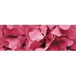 Dekor Fineza Velvet růžová Flowers 25x73 cm lesk DFLOWERS1