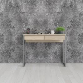 Psací stůl Function Plus 80122 dub sonoma - TVI