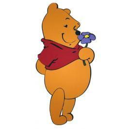 DISNEY - Pooh s kvítkem