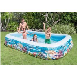 INTEX - nafukovací bazén Family s rybičkami