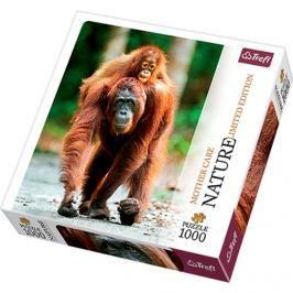 TREFL - Puzzle Orangutan