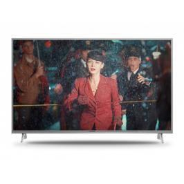 Smart televize Panasonic TX-49FX613E (2018) / 49