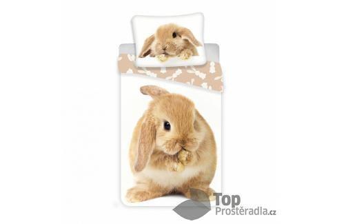 TOP Bavlněné povlečení 140x200+70x90 Bunny Ložní povlečení
