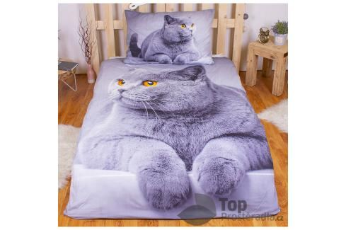 TOP 3D povlečení 140x200 70x90 Grey cat Ložní povlečení