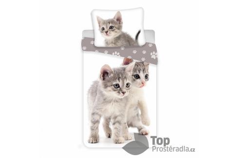 TOP Bavlněné povlečení 140x200+70x90 Kitten Grey Dětské povlečení