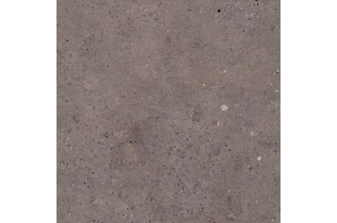 Dlažba Pastorelli Biophilic dark grey 60x60 cm protiskluz P009505 Obklady a dlažby